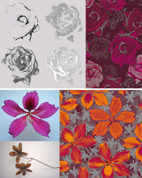 No MÓDULO 3 serão apresentadas as técnicas de imagem recortada + aplicação de filtros Crayon Conté, Estampa e Fotocópia.